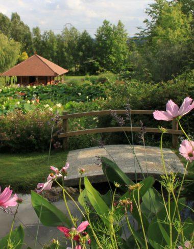 Les Jardins des Martels : un havre de paix à Giroussens