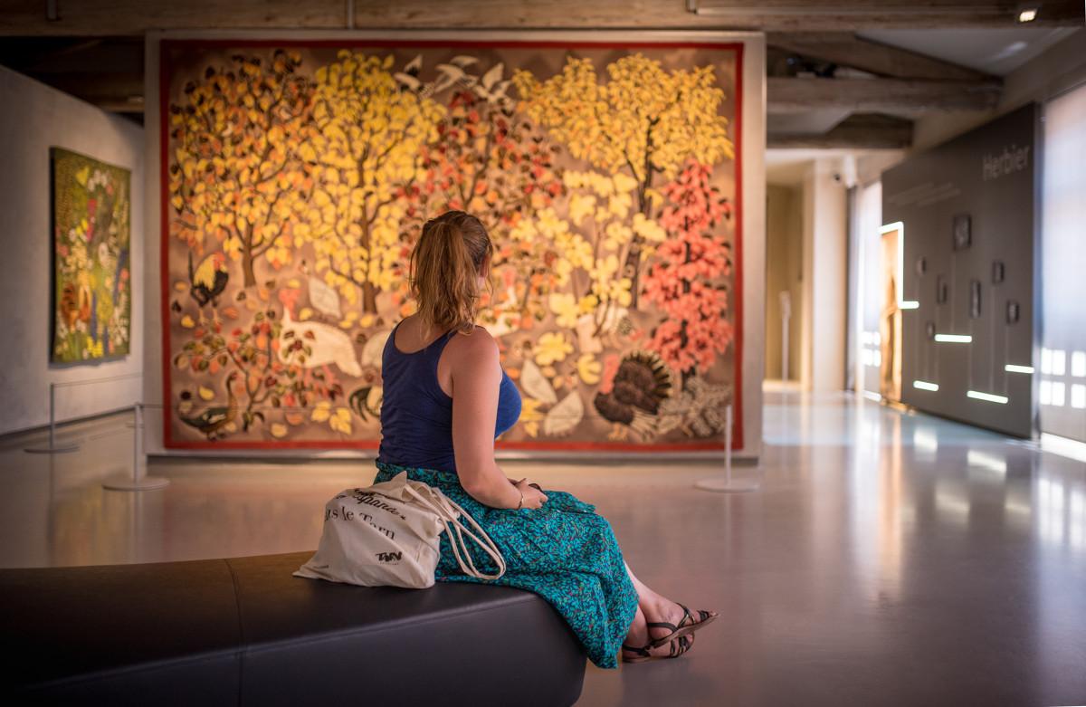 Musée Dom Robert à Sorèze
