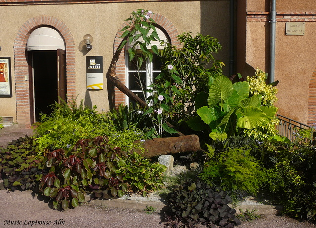 musee laperouse 2013_albi (1)
