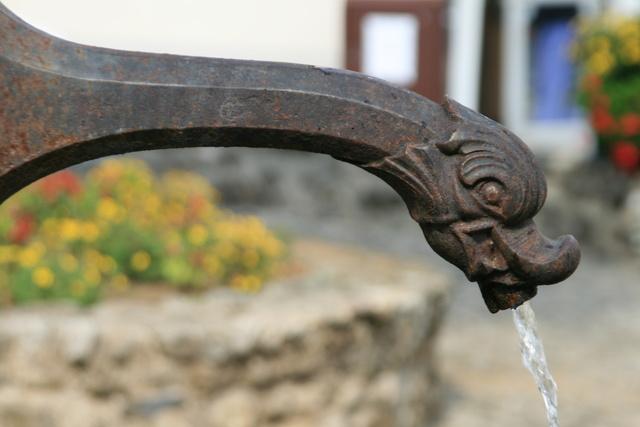 Détails fontaine des Pisseurs _Lacaune les Bains