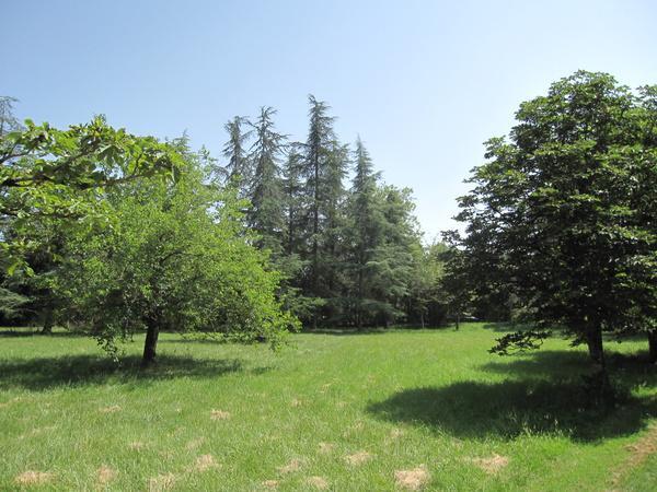 Jardin Meublés et Gîtes Vindrac-Alayrac Arnoux Isabelle
