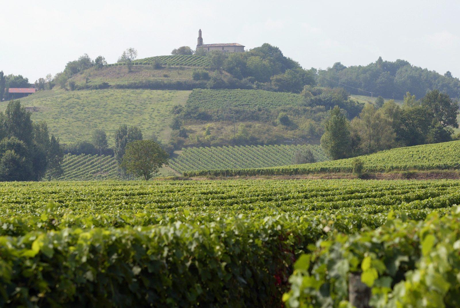 Chateau Clement Termes
