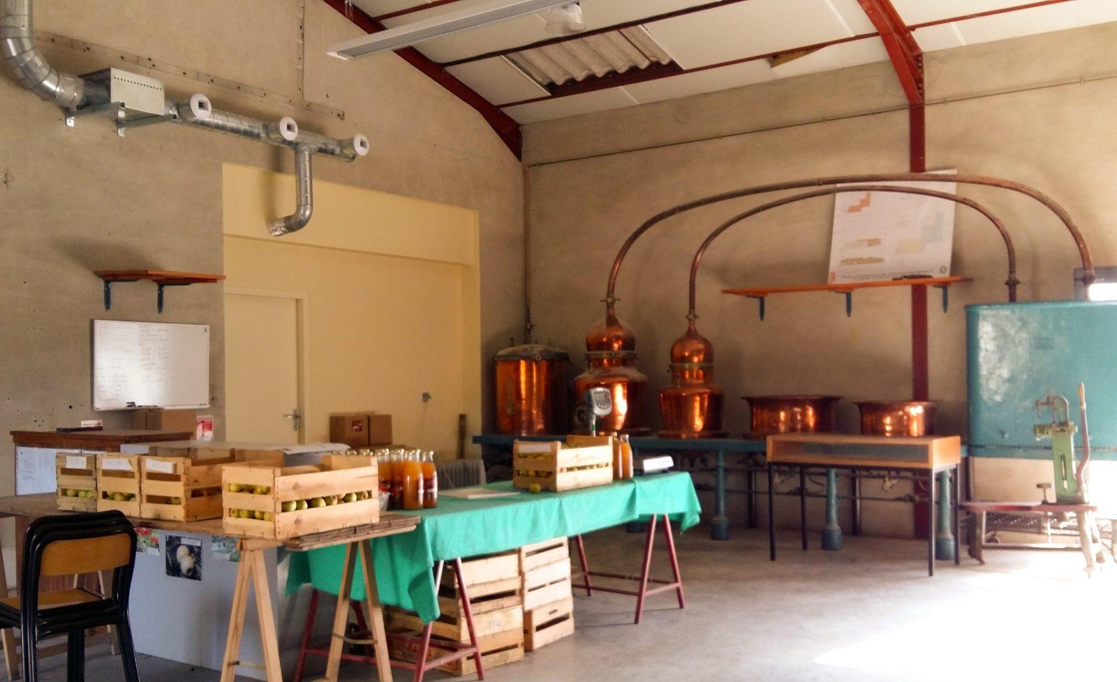 Conservatoire d'spèces fruitières et de vignes anciennes