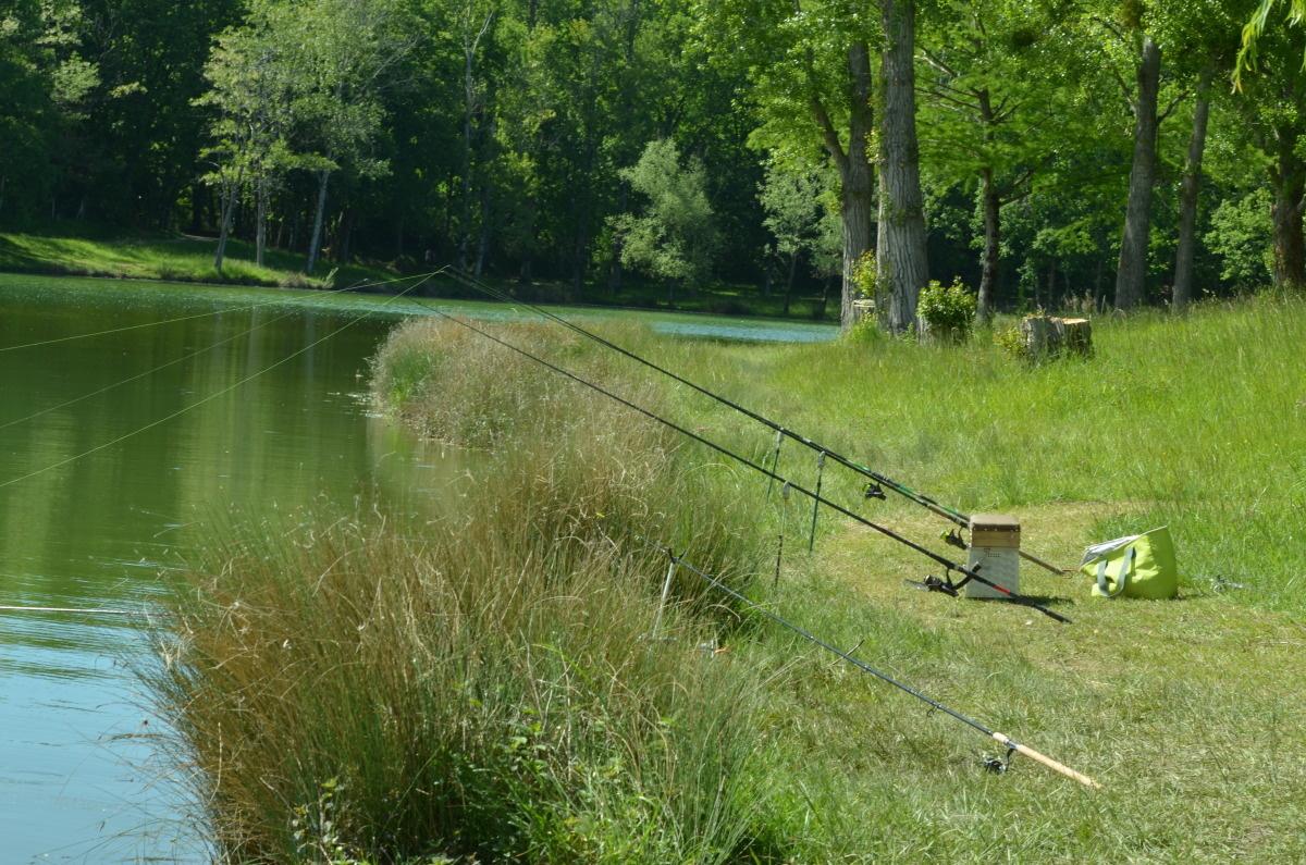 pêche au lac de rabastens