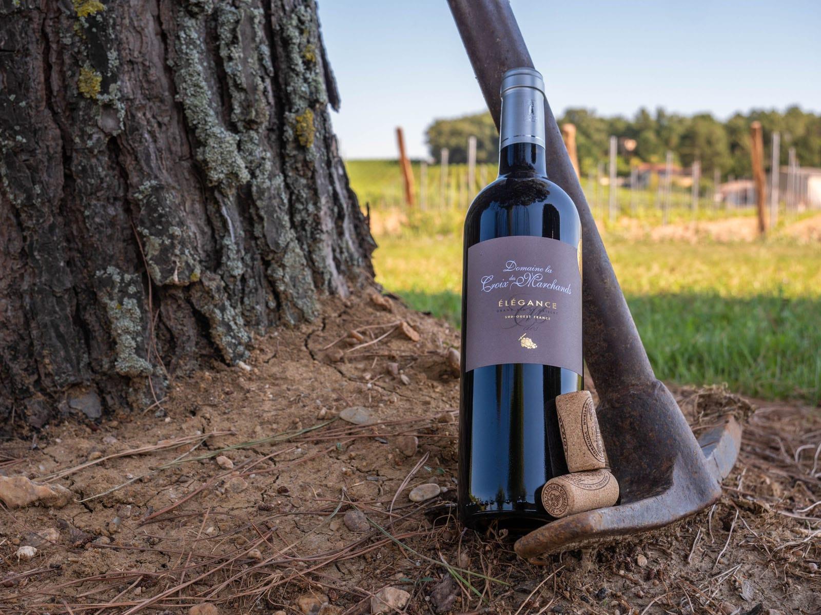 Vacances Tarnaises – 8 jours au cœur du Vignoble de Gaillac