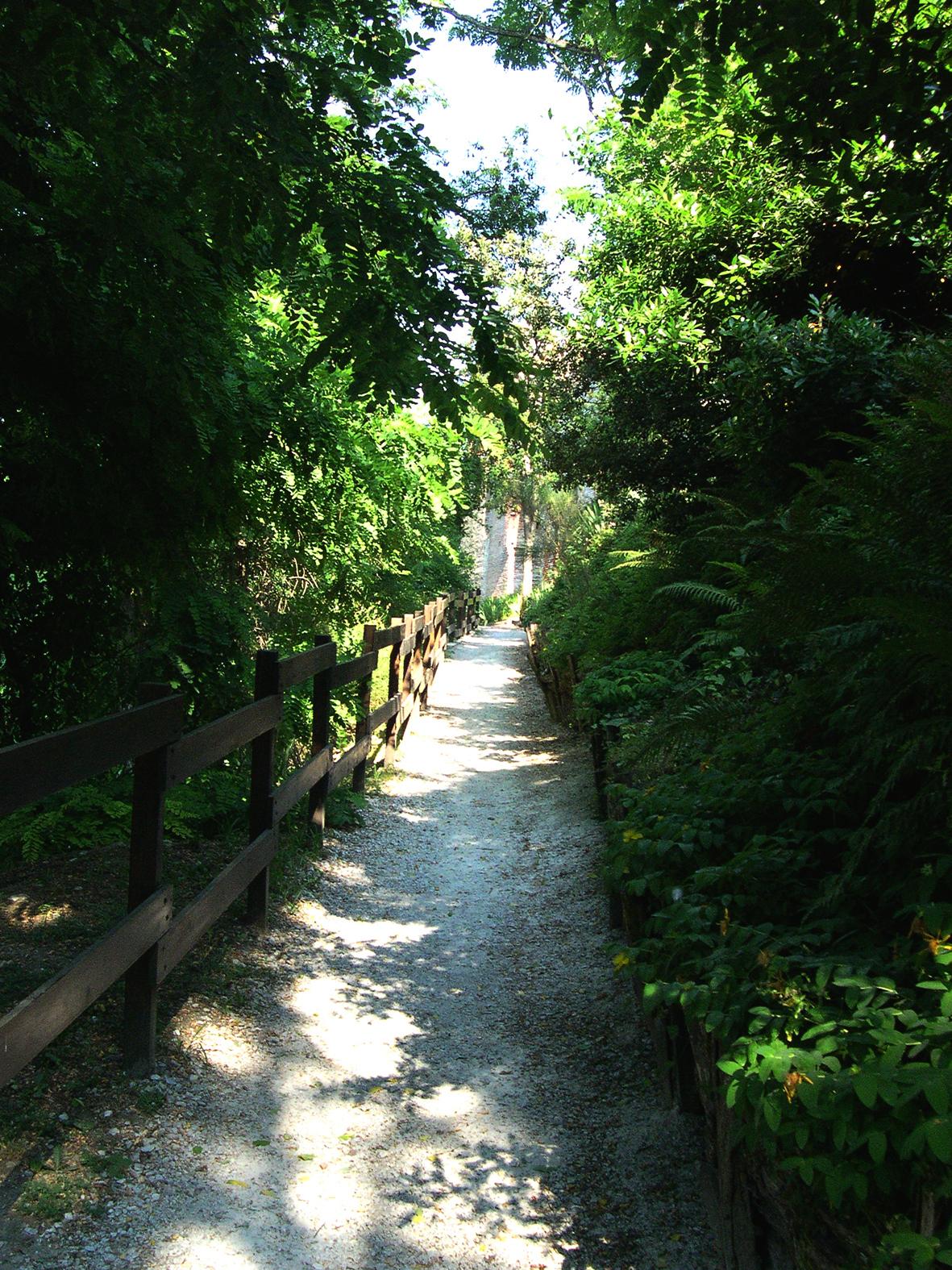 Chemin qui mène au château du Castela – Saint-Sulpice- Tarn – 81