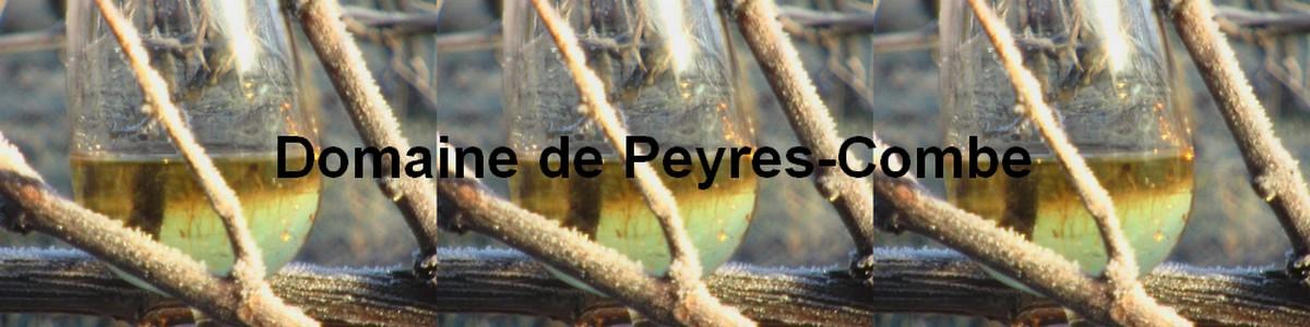 Domaine Peyres Combe
