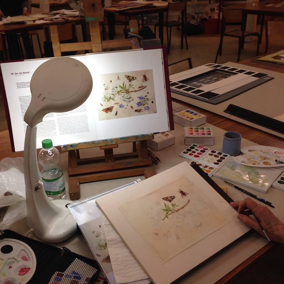 L'atelier de Nicole – Lavaur – Tarn