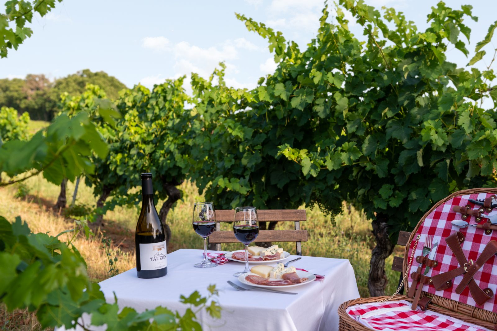 Panier Gourmand dans les vignes_Château de Tauziès