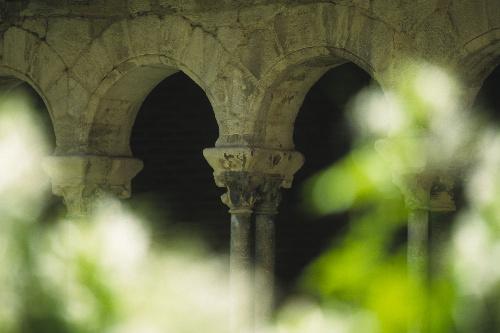Albi Cloitre Saint Salvi