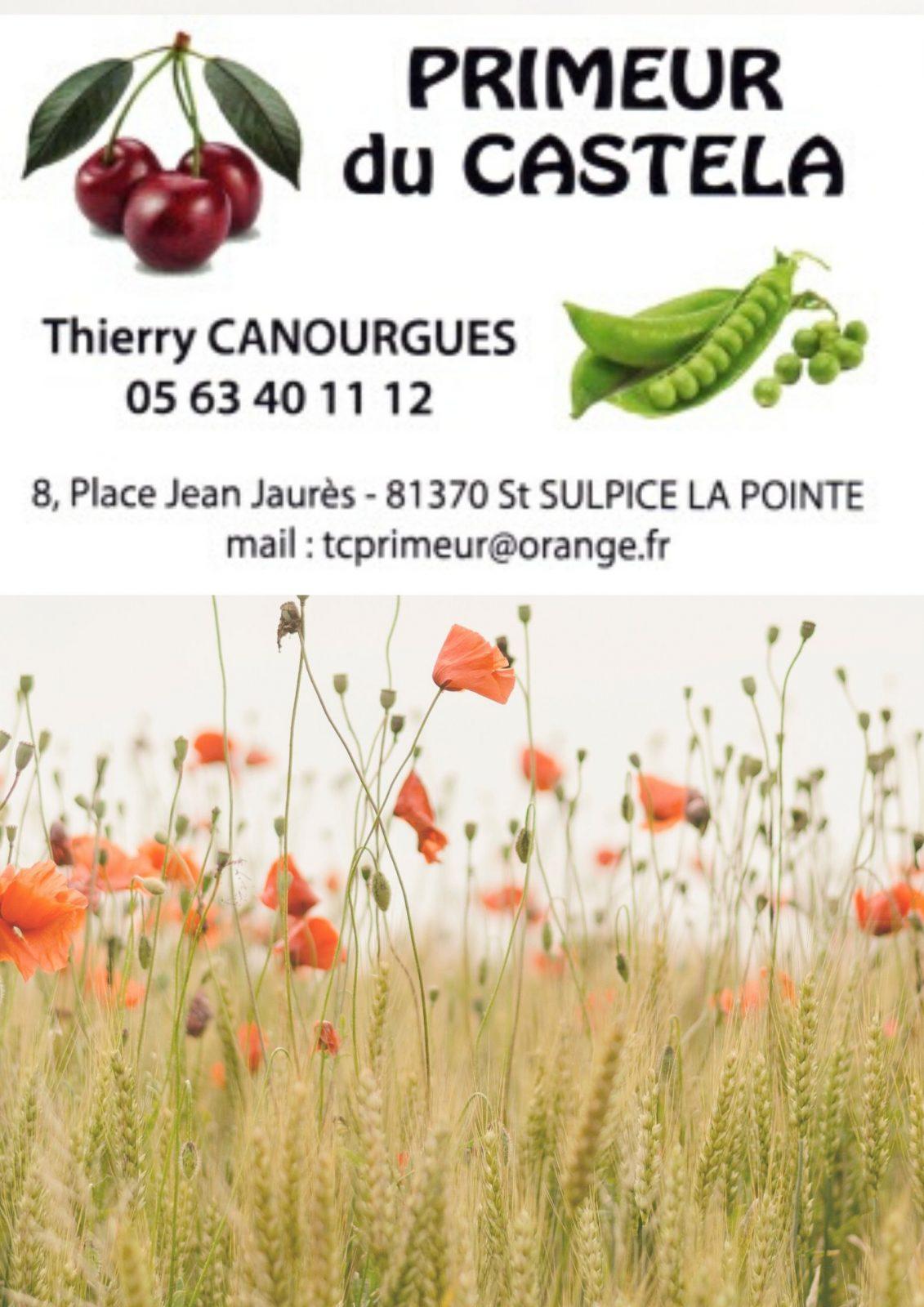 Le PRimeur du Castela – Saint-Sulpice – Tarn – 81