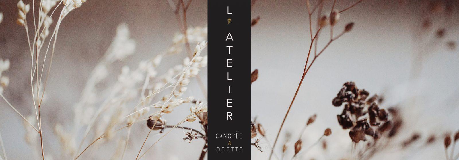 Artisan L'Atelier Canopée et Odette – Lavaur – Tarn