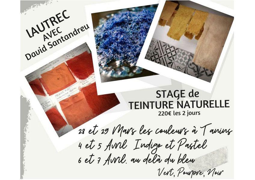 Stages de teinture