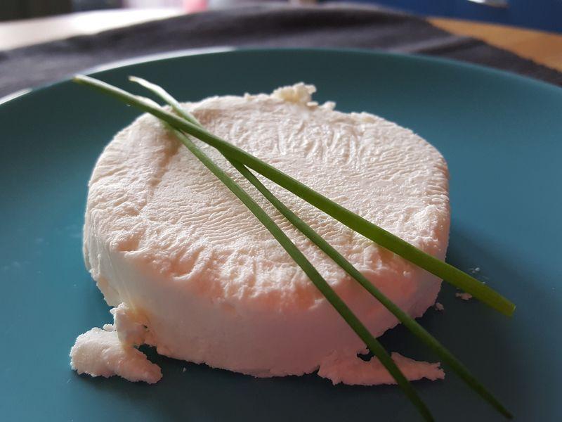 Le Buron Saint-Antoine – Fromage de chèvre – St-Lieux-Les-Lavaur – Tarn- 81