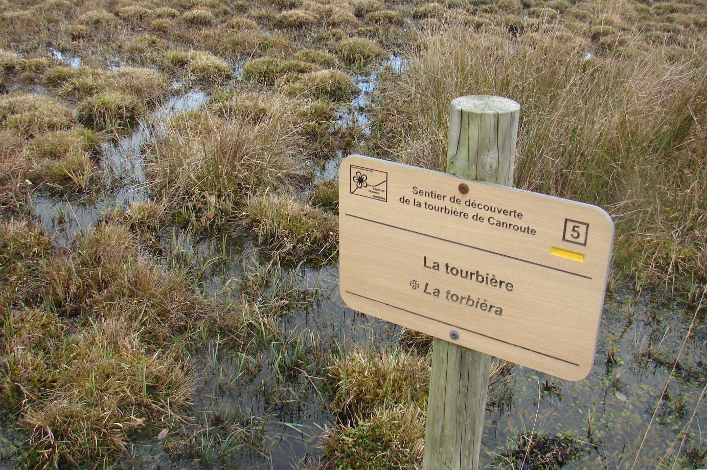 zone humide tourbière de canroute