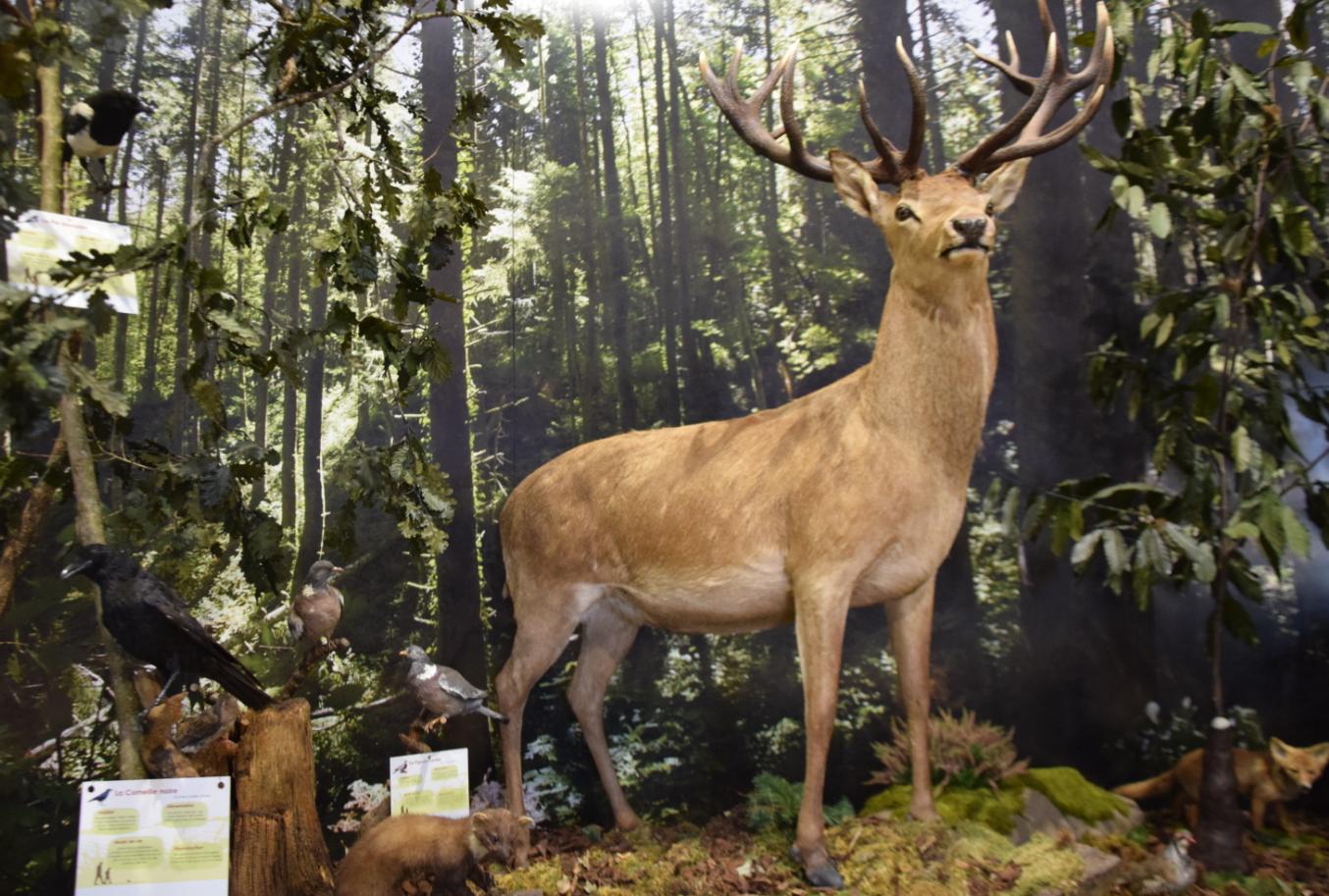 espace biodiversité st pierre de trivisy