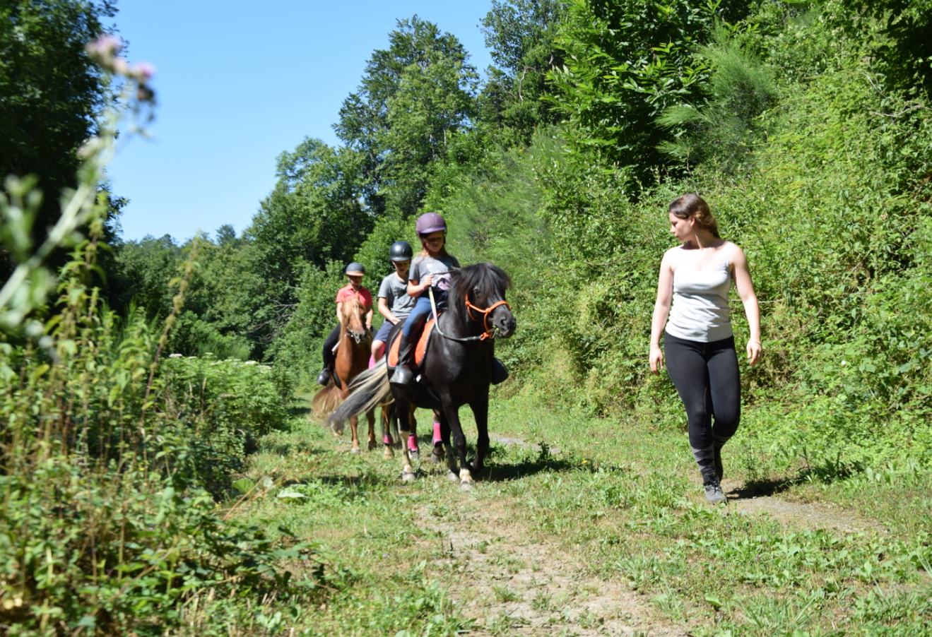 Les poneys de Julie