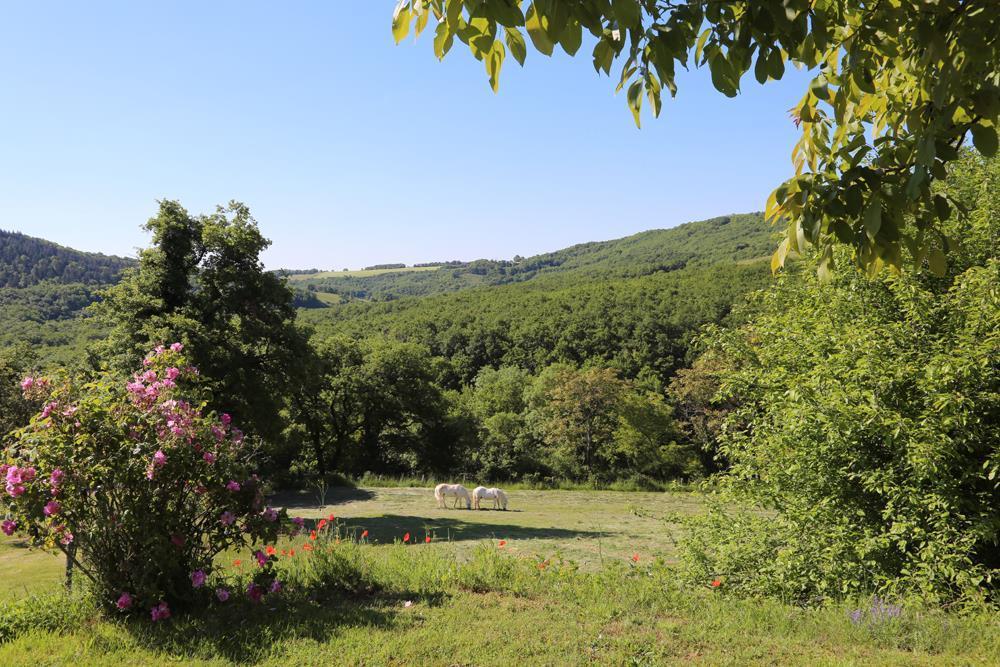 Le gîte Serène – Gîtes de France Tarn