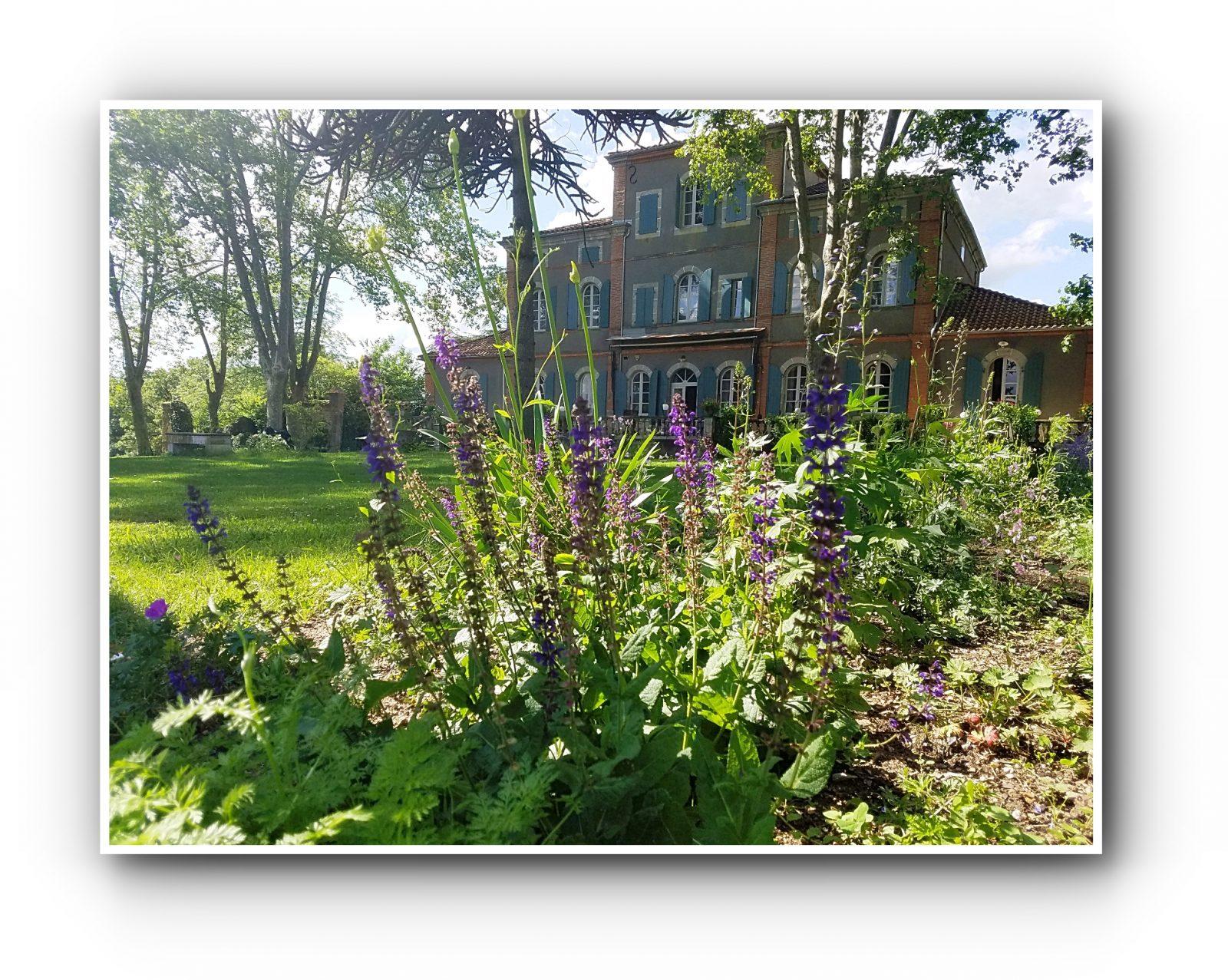 Le jardin à l'été