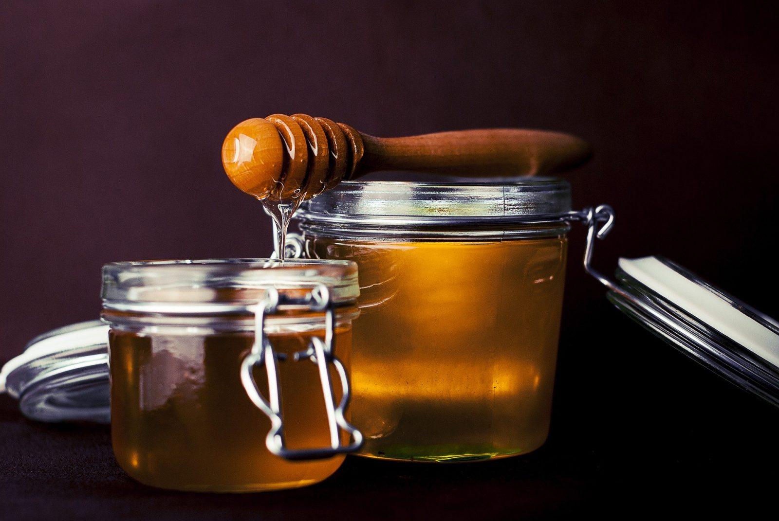 Le rucher de Marquefave