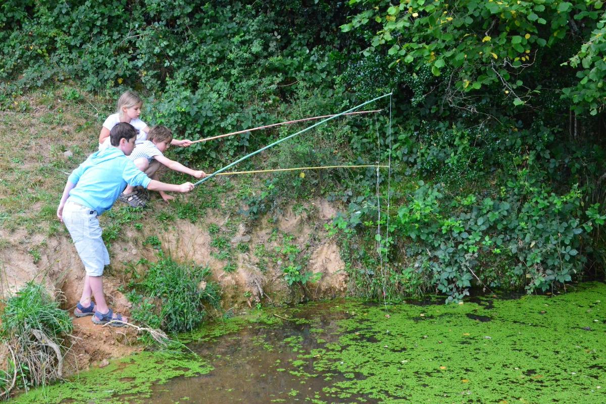 pêche a la grenouille pas de panique elles mordent un chiffon