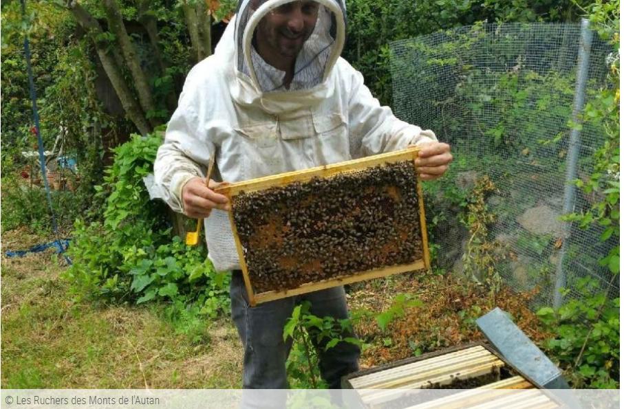 Les ruchers des Monts de l'Autan