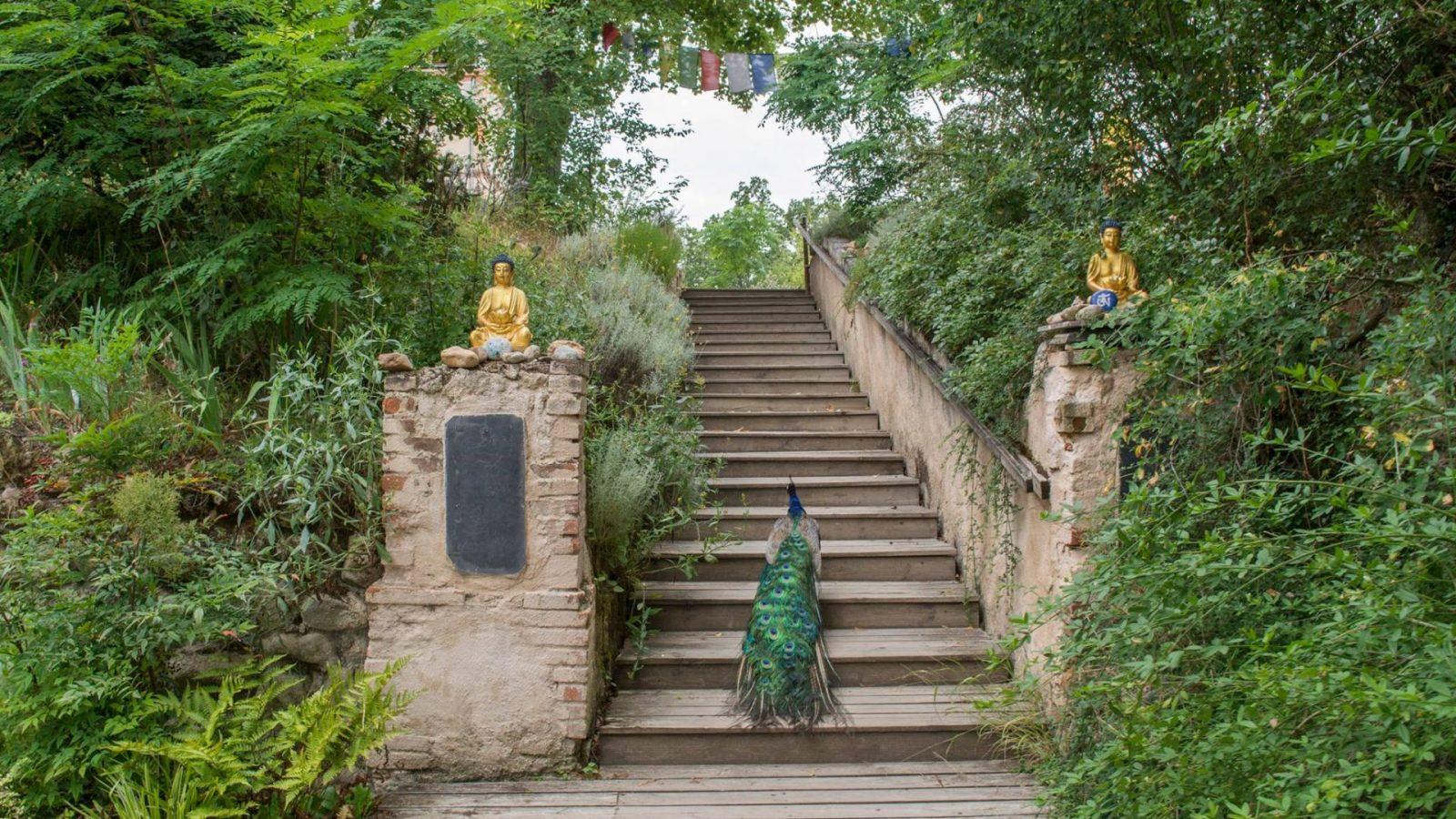 Institut bouddhiste Vajra Yogini – Marzens – Tarn