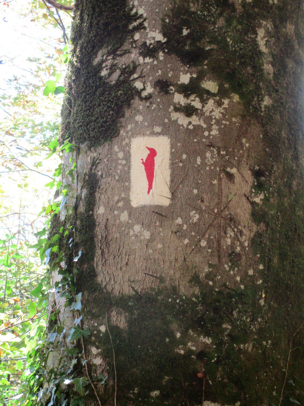Sentier de découverte de Calmels