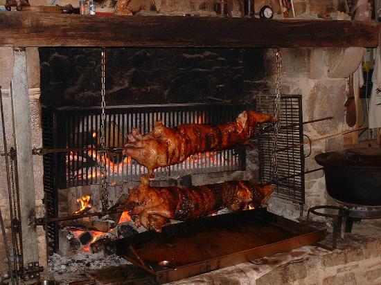 Ferme animaliere de bellevue salles restaurant tarn tourisme - Papa cochon a la piscine ...
